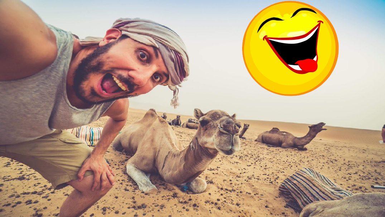 Arab a tava
